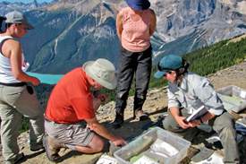 Burgess Shale Guided Hike © Parks Canada