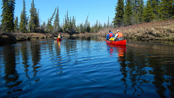 Canoeists travel the Owl River in Wapusk National Park