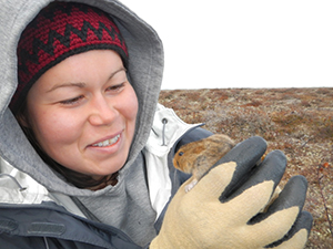 Jill Larkin, Parks Canada Resource Management Officer, conducting small mammal monitoring in Wapusk NP