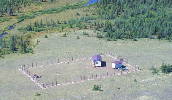 Owl River fenced camp
