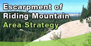 Escarpment of Riding Mountain Area Strategy