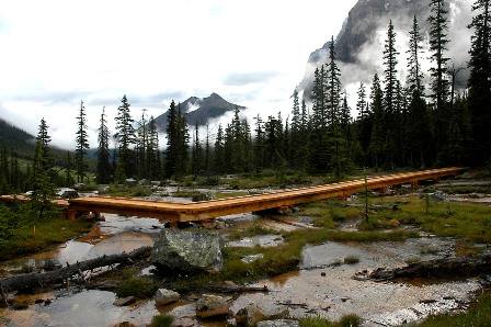 New boardwalk by Giant Steps Falls in Banff National Park © Parks Canada / A. Taylor