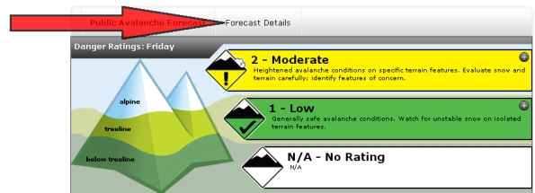 Click the Forecast Details tab for weather, snowpack, and avalanche activity.