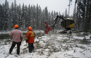 Contract crews working on a fire break © Parks Canada / Percy Woods