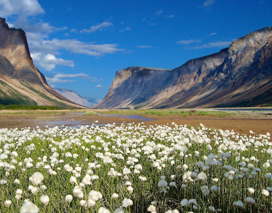 Torngat Mountains National Park of Canada