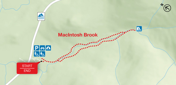 Map - MacIntosh Brook