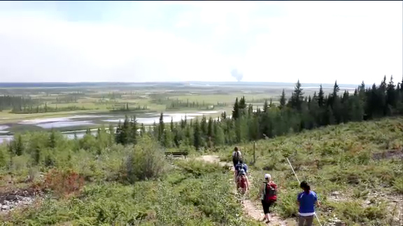 Wood Buffalo, a family experience - Accessed from a side road off Highway 5, the Salt Plains Day Use Area features a pleasant viewpoint overlooking the spectacular Salt Plains. Look for wildlife on the plains with the high-powered telescope, and read the interpretive signs to learn about the natural history of the area. Picnic tables and fire grates are available for your use and enjoyment. Tread lightly as you explore this fascinating landscape. Your footprints will mingle with those of animals - bears, wolves, moose, bison, foxes, and sandhill cranes among others.