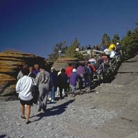 Group of visitors taking part in a guided hike and walking in single file along a narrow path.