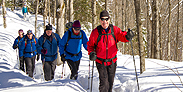 Five adults are snowshoeing in a trail in the woods.