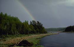 Rainbow over small lake with beaver lodge in foreground