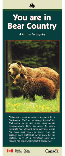 Cover of You are in Bear Country Brochure, showing image of female grizzly with cub
