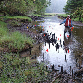 Mapping a Fish Weir in Matheson Inlet