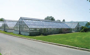 Main Greenhouse Range (Building 50), Central Experimental Farm, National Historic Site, Ottawa, Ontario
