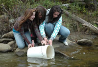 Students help with the reintroduction of speckled trout to Lac Bouchard