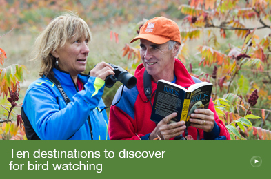 Ten destinations to discover for bird watching