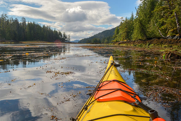 The front of a kayak points down the Burnaby Narrows