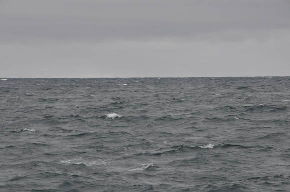 Strong winds gusting to 30 knots on Sunday August 27 bring an end to surveying with the Gannet and Kinglett for 2011.