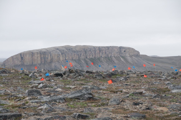 Artefacts flagged at the Paleoeskimo site, with Gryfalcon Bluff in the background.