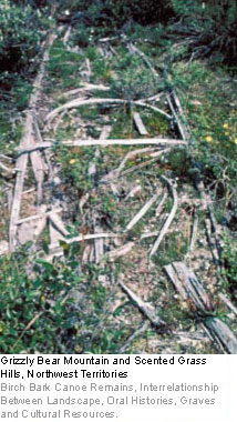Grizzly Bear Mountain and Scented Grass Hills, Northwest Territories - Birch Bark Canoe Remains, Interrelationship Between Landscape, Oral Histories, Graves and Cultural Resources.