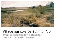 Photo du village agricole de Stirling, Alb. Type de colonisation particulier des Mormons des Prairies