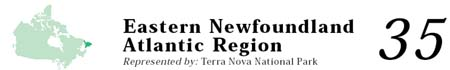 Eastern Newfoundland Atlantic Region