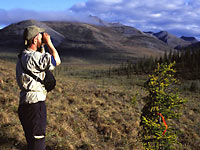 Ian McDonald surveying birds near Margret Lake