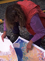 Catherine Kennedy checking the vegetation map.