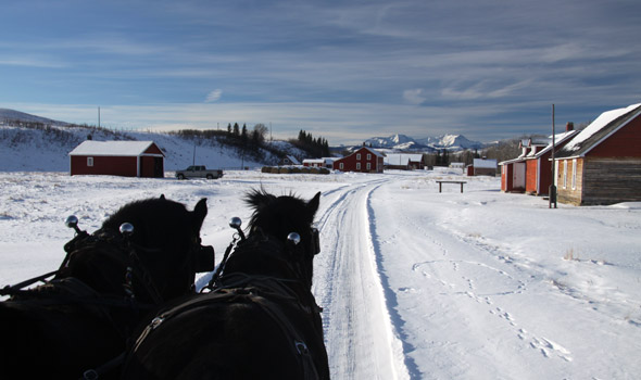 Bar U Ranch team in winter