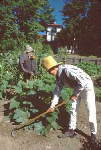 Male gardener in period costume