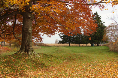 Southwold Earthworks National Historic Site of Canada