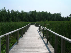 Ken Reid Conservation Area
