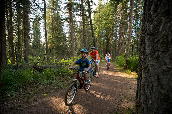 A boy, a man and a woman are on bikes on a wooded path.