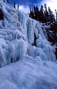 Sunwapta Falls in winter
