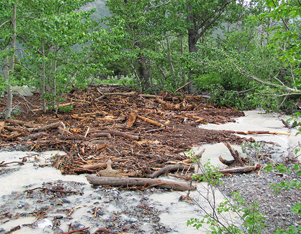 Debris in Coppermine Creek