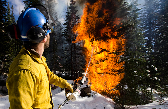 Park staff conduct a high-elevation prescribed burn in Blue Grouse Basin in October
