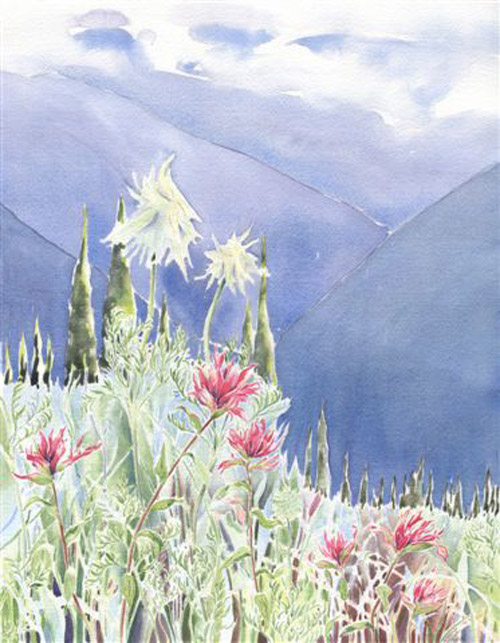 'The Summer Side of an Avalanche Slope' by Shelley Ross