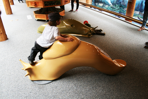 Ride a giant slug