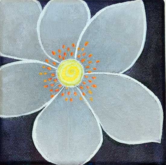 """Western Anemone"" by Evelyn Blommestein, 2013"