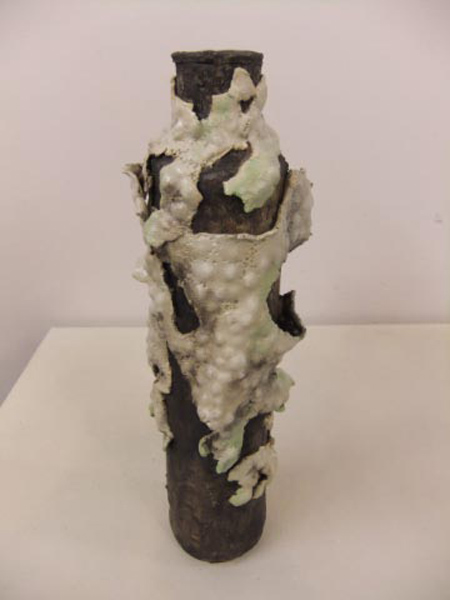 Lichen Pot 2 by Sandra Flood