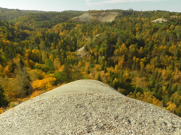 Fall colours from atop Bald Hill