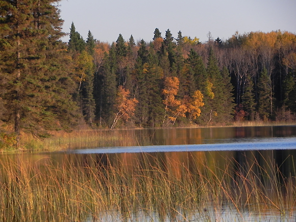 Fall colours at Lake Katherine