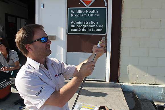 Resource Management Officer Tim Sallows loads tranquilizer dart