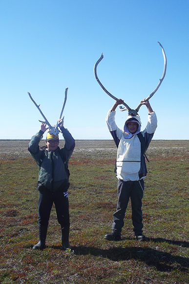Finding caribou antlers in Wapusk National Park