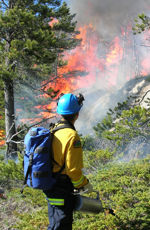 Handheld driptorches can be used to ignite dry surface vegetation during prescribed fires © Parks Canada 2008