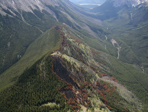 A patchwork of burned areas on Charlie Horse Pass © Parks Canada 2008