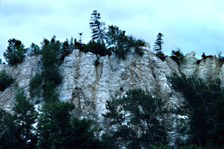 View of a gypsum cliff located near the park. The chalky white gypsum stands out from the surrounding dark vegetation.