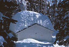 Unusually heavy snowfall has all but buried a park employee's garden shed.