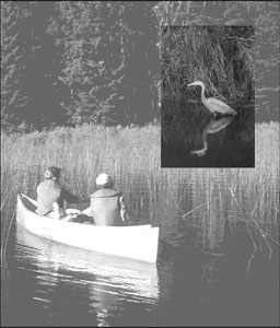 Photography of two people canoeing