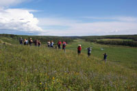 A group of stakeholders surveys the Sturgeon River Valley.