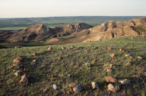 Teepee Rings, Badlands at Grasslands National Park of Canada (Sask.)